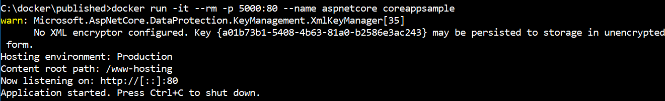 Asp.net Core Application running Docker Container