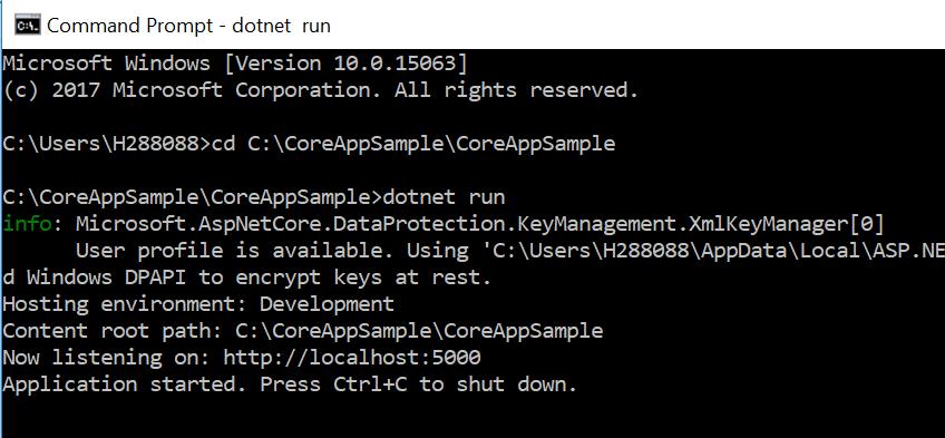 Running Asp.net Core Application
