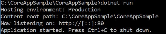 Running Asp.net Core Application on port 80