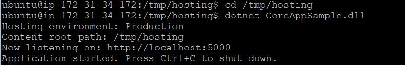 Running Asp.net Core application in Ubuntu