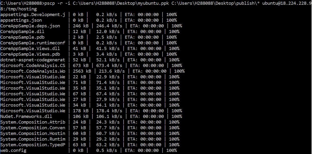 Uploading files to Ubuntu from Windows using pscp